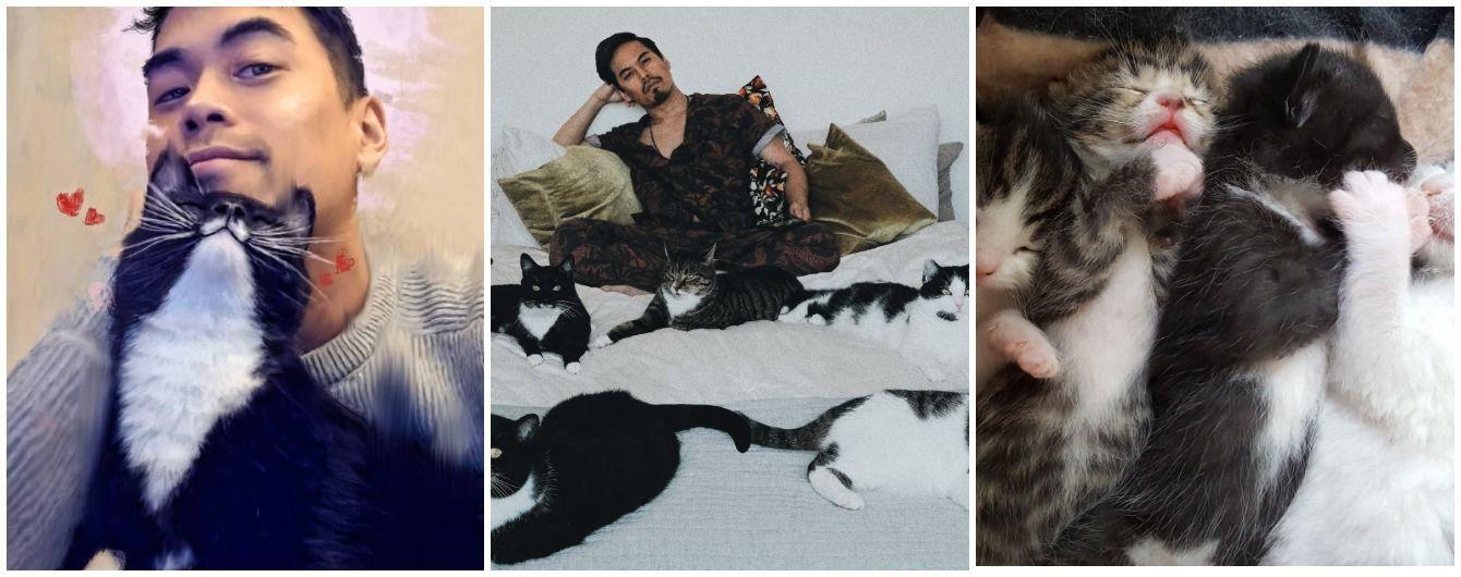 Мімімі дня: чоловік показав життя з п'ятьма котиками, яких прихистив два роки тому