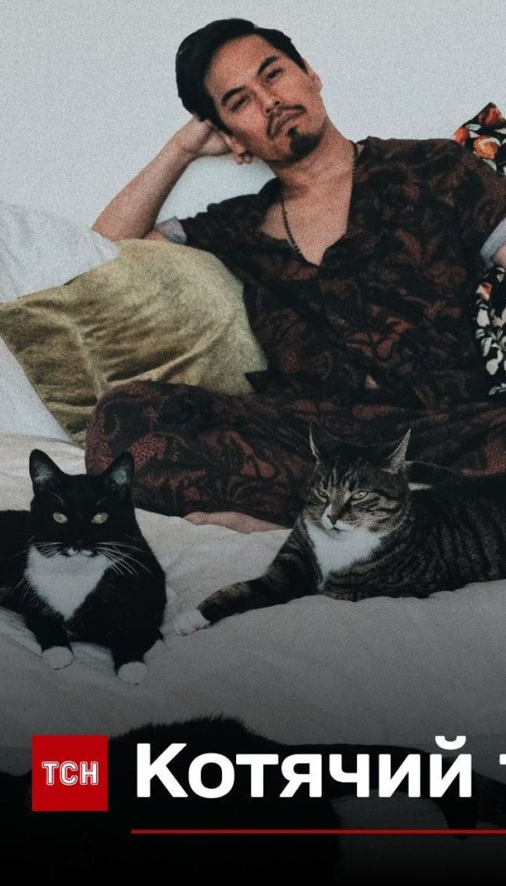 Котячий татусь: хлопець прихистив пухнастиків, які випадково народилися в його домі