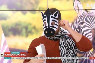 Какие интересные факты про зебр стоит знать