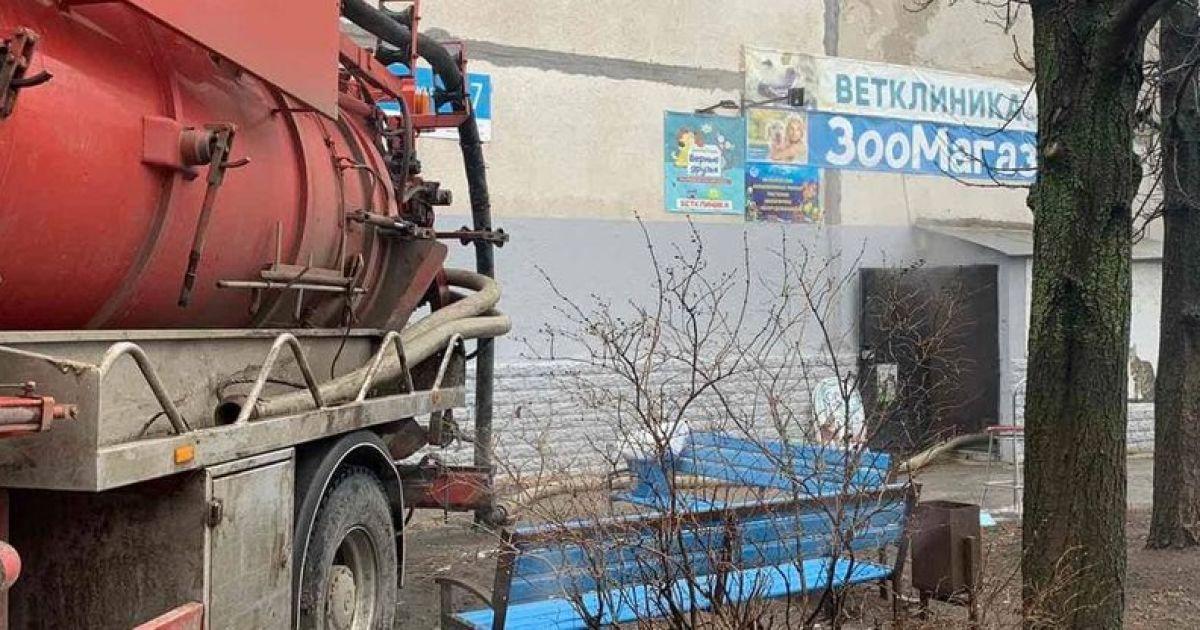 Хом'яки зварились: у зоомагазині Харкова тварини загинули в окропі