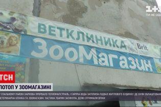 У спальному районі Харкова прорвало тепломагістраль – окропом затопило зоомагазин
