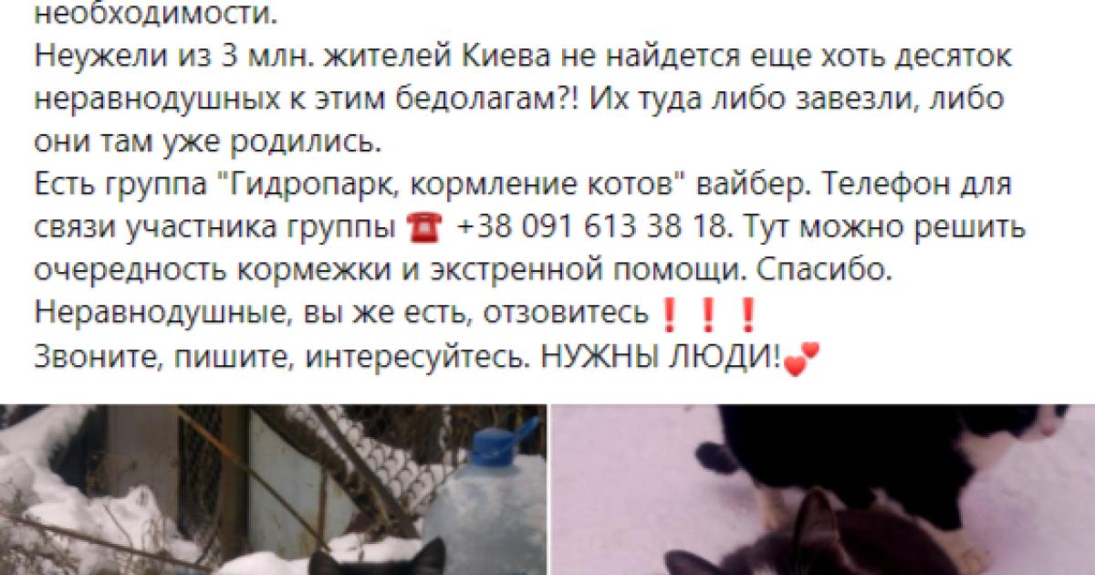 Фото: facebook.com/Київські хвости