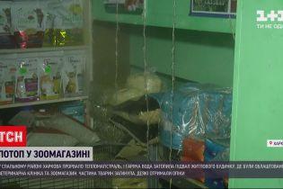Потоп у харківському зоомагазині: загинуло кілька тварин