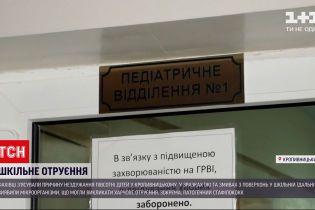 Фахівці з'ясували причину отруєння 50 дітей у шкільній їдальні в Кропивницькому