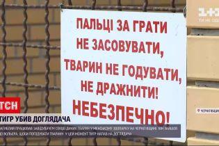 Новости Украины: в Черниговской области тигр убил своего смотрителя