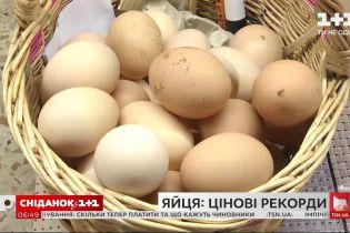 Чому яйця сильно подорожчали й чим це загрожує