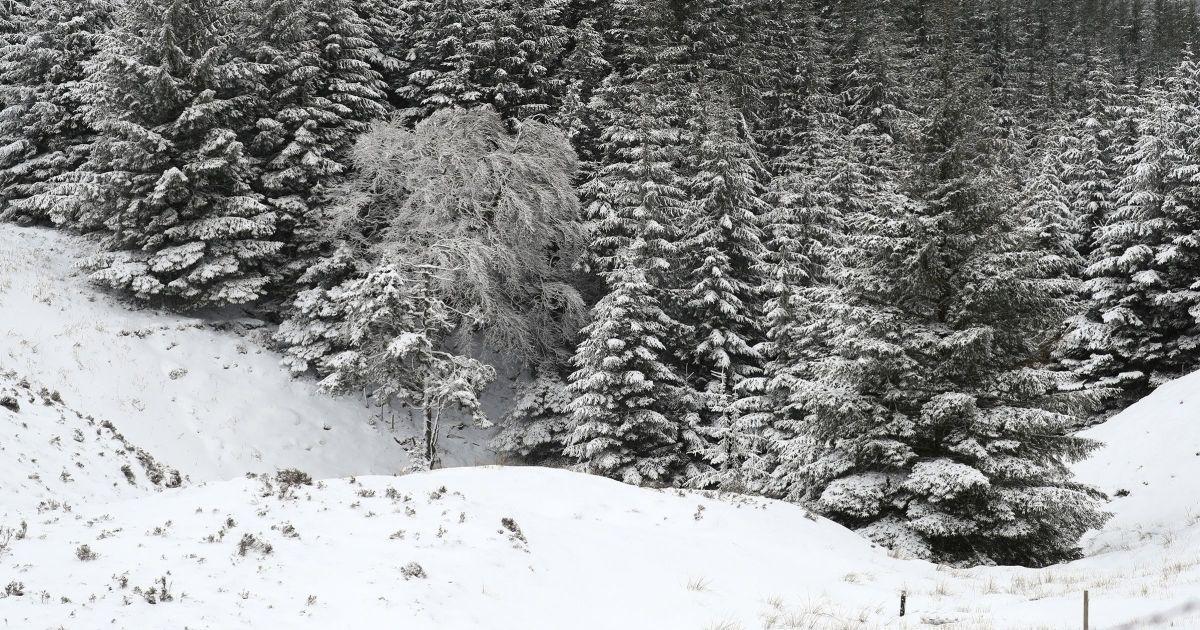 Из-за оттепели и осадков в Карпатах возможен сход лавин