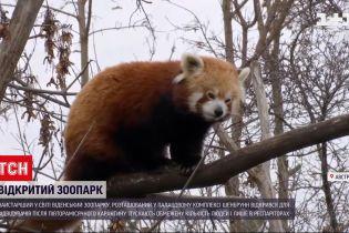 Новости мира: старейший в мире венский зоопарк открылся для посетителей