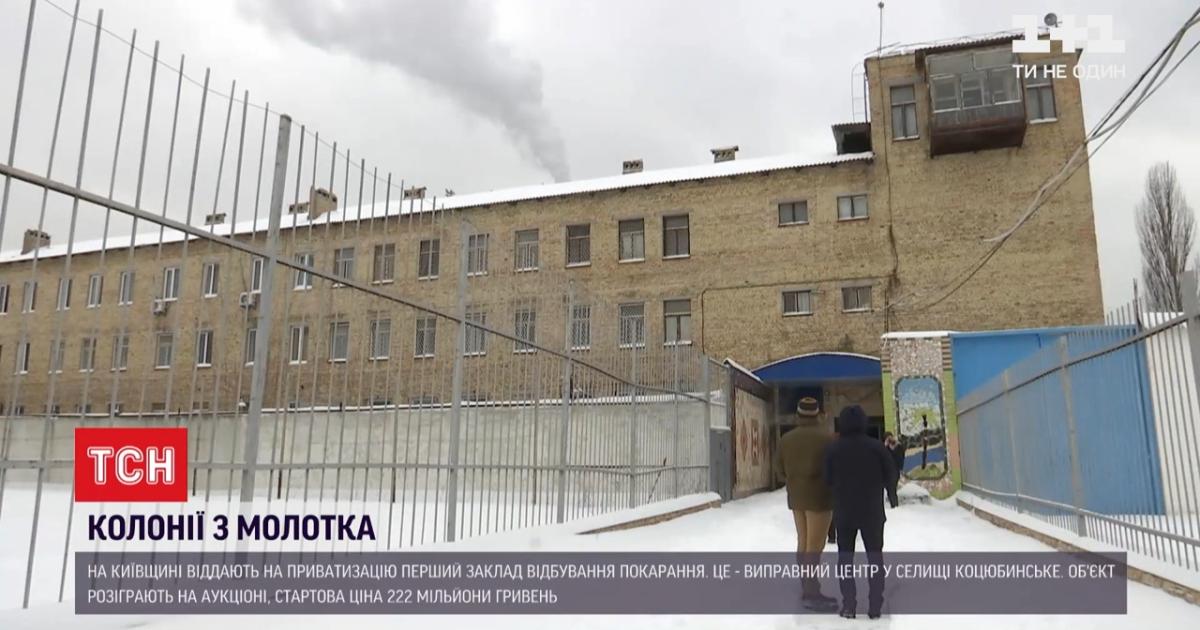 В Киевской области продадут с молотка колонию с 8 гектарами