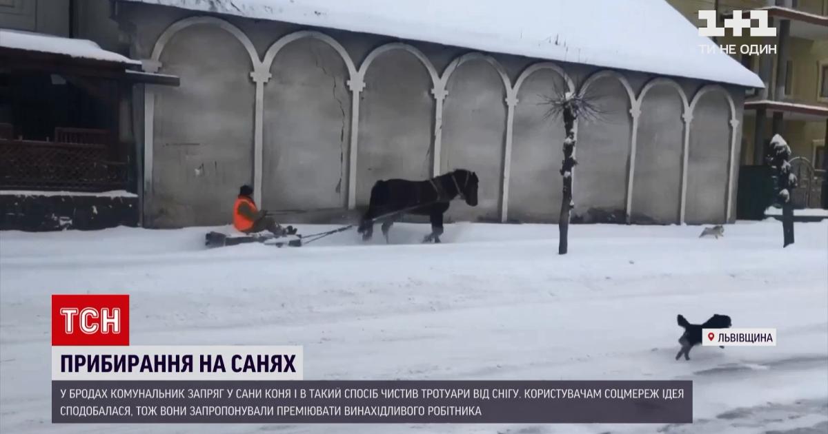 Во Львовской области коммунальщик запряг лошадь и на санках расчищал улицу: видео