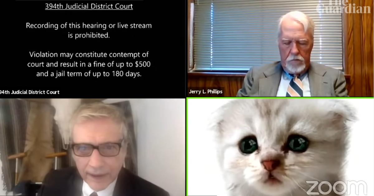 Адвокат из США появился на онлайн-заседание суда с маской милого котенка (видео)