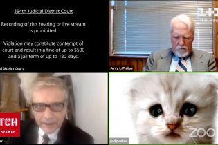 Новини світу: юрист із США ледь не зірвав онлайн-засідання через фільтр із кошеням