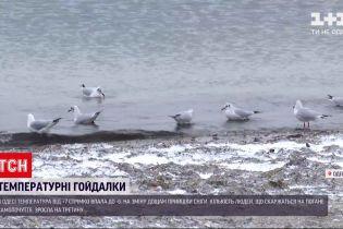 """Погода в Україні: заходом, центром та півднем країни розгулявся циклон """"Волкер"""""""