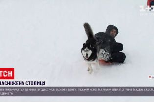 Погода України: як у Києві пристосовуються до великого снігу