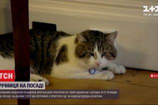 Новости мира: главный мышелов премьера Великобритании отмечает юбилей на посту