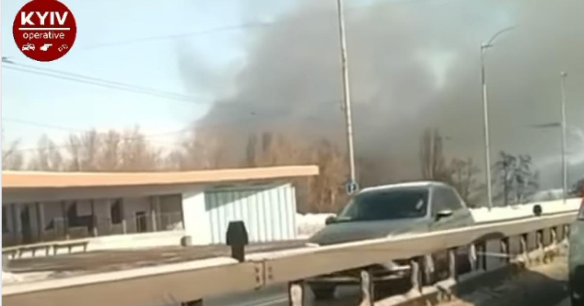В Киеве возник пожар в парке Муромец (видео)
