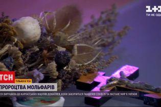 Новости Украины: карпатские прорицатели рассказали, что ждет украинцев в будущем