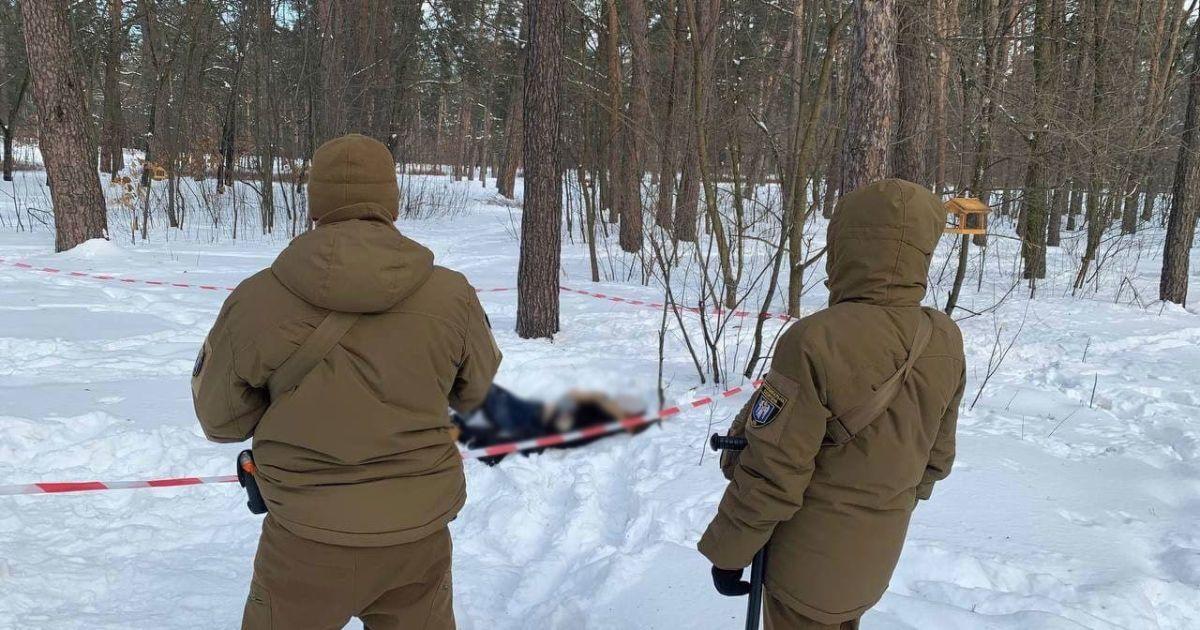 У Києві шукають рідних загиблої дівчини, яку знайшли у парку Партизанської слави