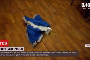 Новини України: у Дніпрі водний патруль врятував чаплю зі стічного колектора