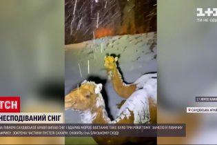 Новини світу: на півночі Саудівської Аравії вперше за три роки випав сніг