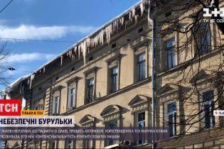 Новости Украины: во Львове сосульки с крыш разбивают машины - кто должен компенсировать ремонт