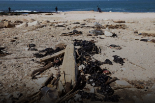 Пляжи Израиля почернели после разлива нефти в море