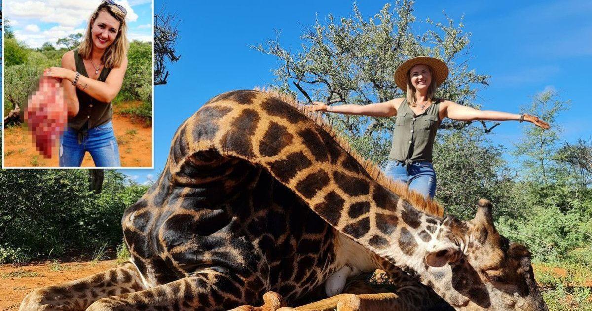 Мисливиця похизувалася серцем щойно застреленого жирафа і збурила Мережу