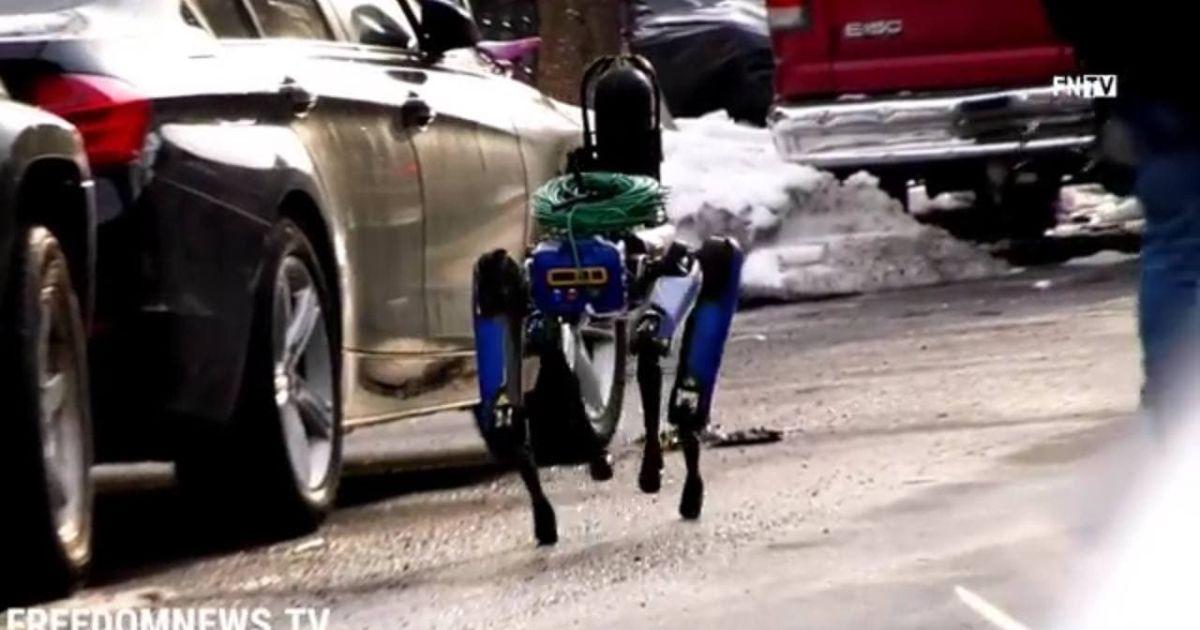 Шукав у будинку грабіжників: у Нью-Йорку робопес від Boston Dynamics допомагав копам розкрити злочин (відео)