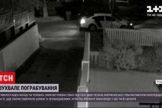 Новости мира: обнародовали видео, на котором видно как похитили собак Леди Гаги