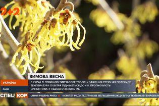 Одне з найтепліших міст: у Львові зустріли стрімку весну