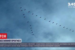 Погода в Україні: про що попереджають синоптики на початку весни
