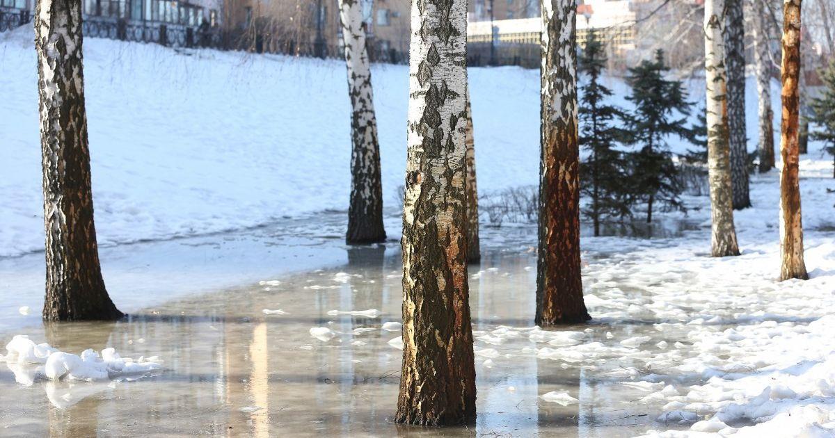 Яким буде перший тиждень весни: прогноз погоди в Україні на 1-7 березня