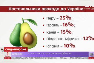 Імпорт авокадо зріс у 8 разів – Економічні новини