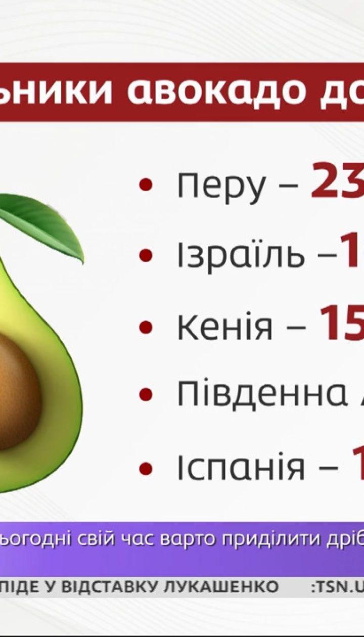 Импорт авокадо вырос в 8 раз – Экономические новости