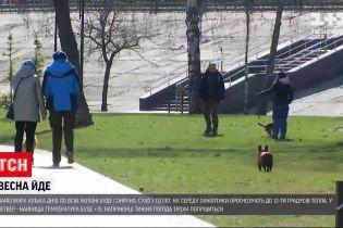 Погода в Україні: в регіони повертається весна, потеплішає до 15 градусів