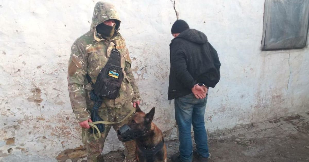 Наздогнав втікача і схопив: в Херсонській області поліцейський пес затримав серійного злодія