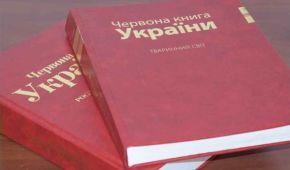 Рак, тритон, ящірка, ховрах, вугор та інші: до Червоної книги України занесуть новий перелік тварин