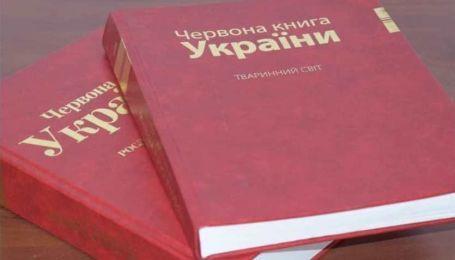 Рак, тритон, ящерица, суслик, угорь и другие: в Красную книгу Украины занесут новый перечень животных