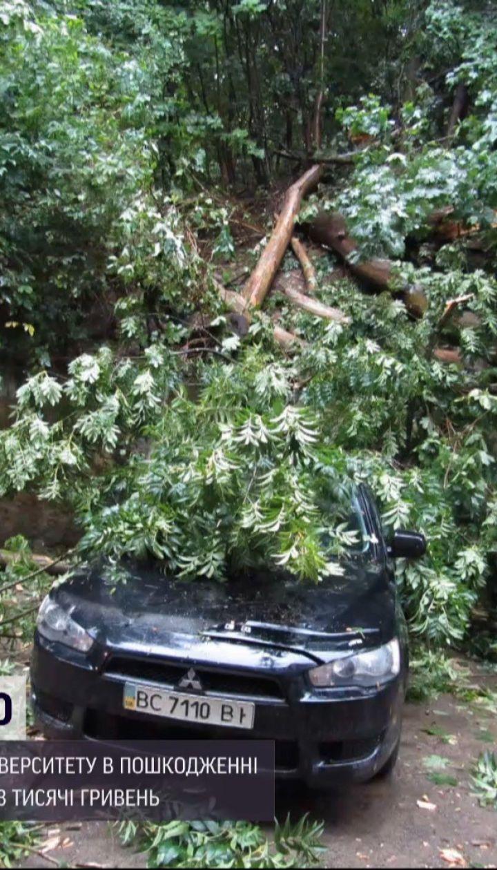 Новости Украины: женщина отсудила компенсацию за поврежденное авто у ВУЗа