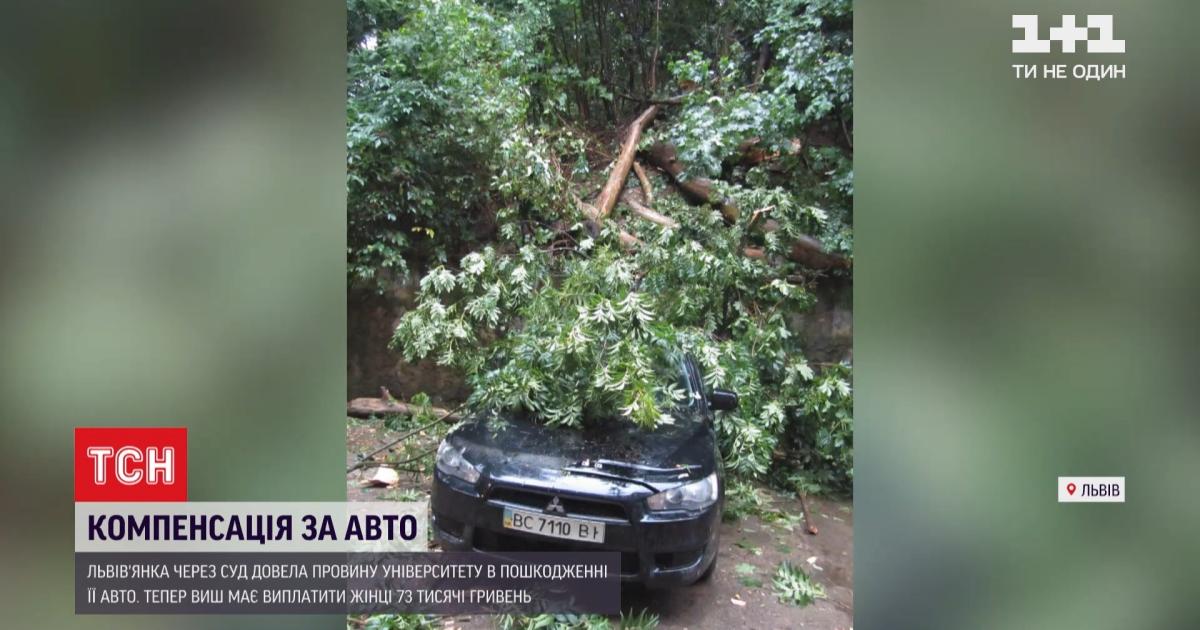 Жінка відсудила компенсацію за пошкоджене авто у Львівської політехніки