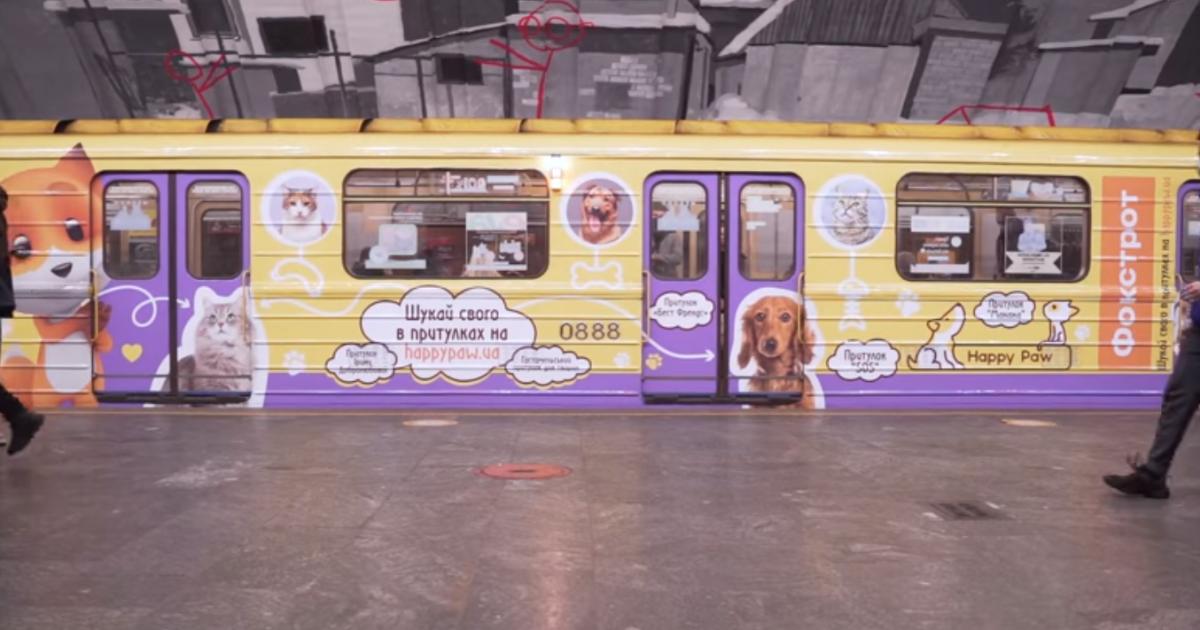 В киевском метро курсирует милый вагон с изображениями котиков и собачек из приютов: видео