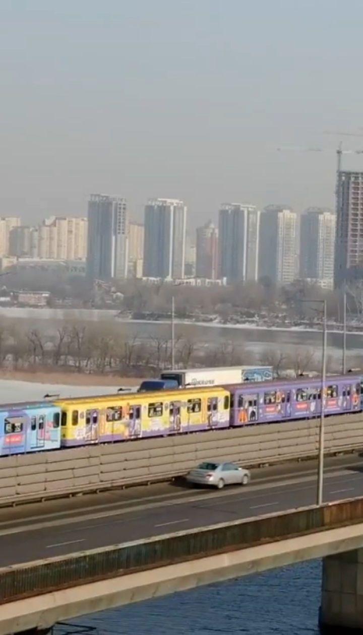 У київському метро курсує потяг із зображеннями тварин з притулків