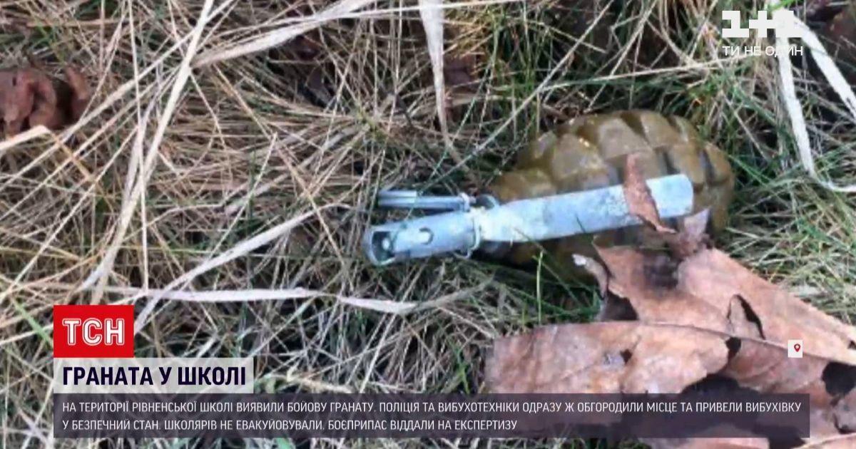 У рівненській школі знайшли гранату: з'явилося відео