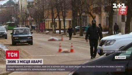 У Житомирі водій на переході на смерть збив жінку з двома псами і втік без зупинки