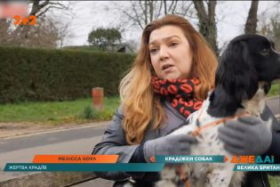 Відкрите полювання на собак переживає Велика Британія