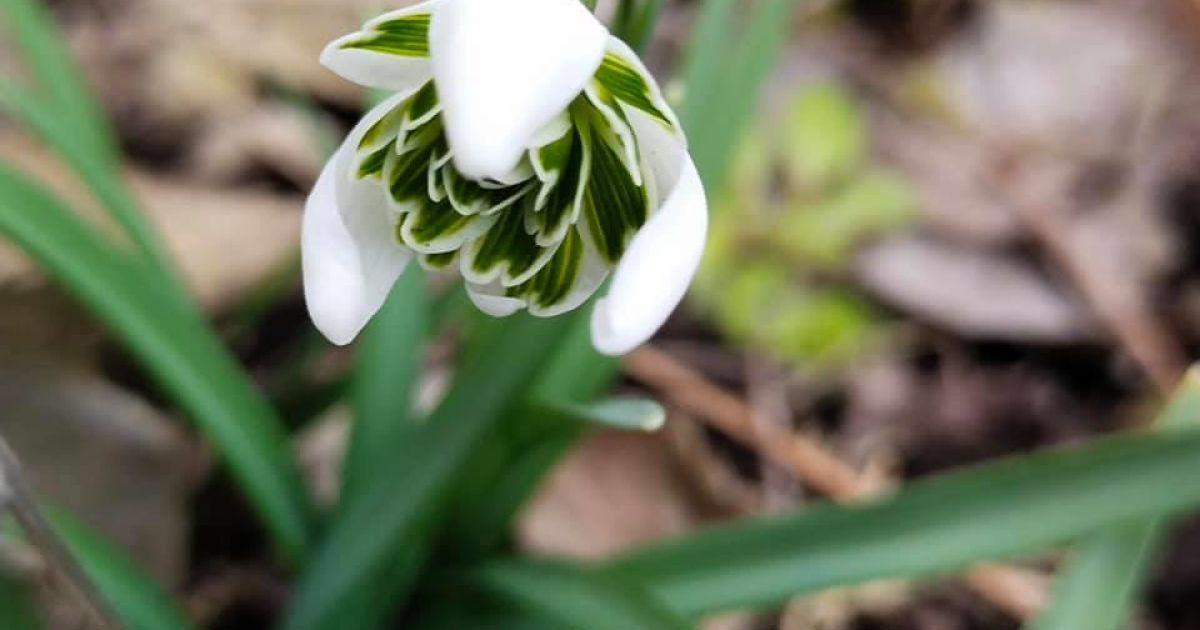8 квітня: що сталося цього дня, прикмети, День янгола