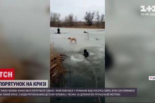 Новини України: у Києві чоловік ледь не загиув, поки рятував пса