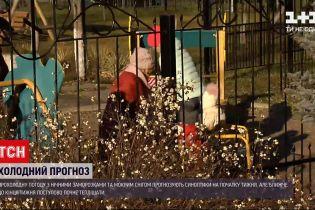 Новини України: якою буде погода цього тижня