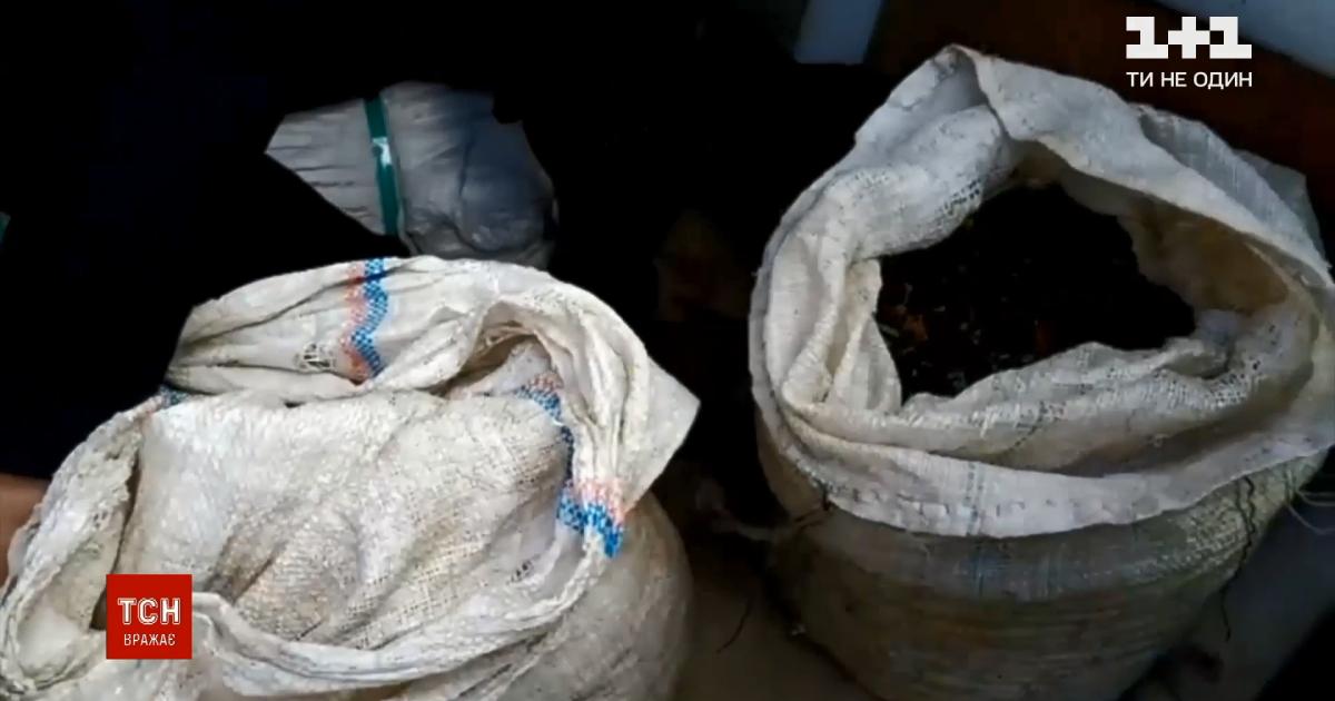 Житель Ровенской области пытался вывезти за границу янтаря на полмиллиона