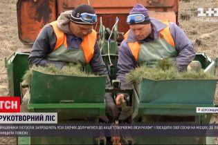 Новости Украины: в Херсонской области начали высаживать сосны на местах, где были лесные пожары